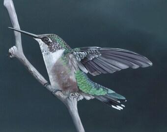 Hummingbird Painting N.02 Print of painting 5 by 7 print, bird art, wall art, home decor
