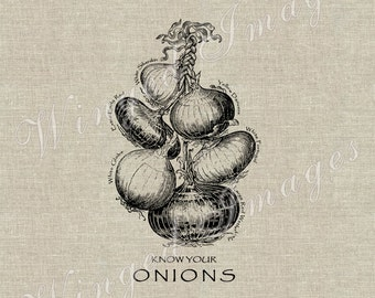 Know Your Onions. Instant Download Digital Image No.300 Iron-On Transfer to Fabric (burlap, linen) Paper Prints (cards, tags)
