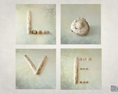 Love fine art photograph, sea shells, typographic photo, set of 4, engagement gift, Valentines day, titled LOVE