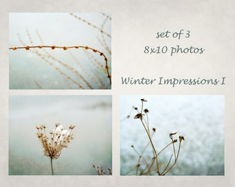 Winter photography, Dried Wildflowers, Nature photography, Macro photography, Abstract nature, Aqua Beige Grey, Neutral Cabin décor
