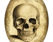 Victorian Goth Steampunk Antique Anatomy Skull - 5x7 Inch Single Digital Oval Image - Instant Download, Printable, Digital Download