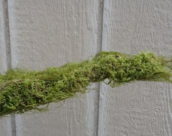 """Moss Branch 8""""-12"""""""