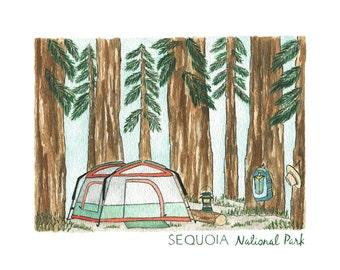 Sequoia National Park Print