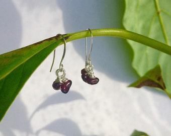 Persephone Pomegranate Seed Garnet Cluster Dangle Earrings
