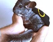 Chinchilla costume cape Batman