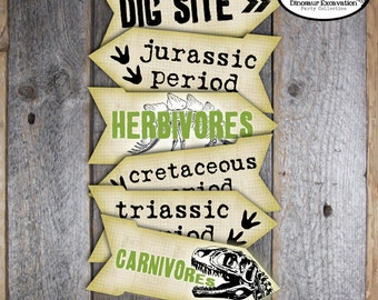 Dinosaur Signs - Dinosaur Excavation Arrow Signs - Dinosaur Dino Dig Party Signs - Paleontology Directional Signs - Printable (Vintage)