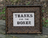 Thanks for the Boner - framed cross stitch