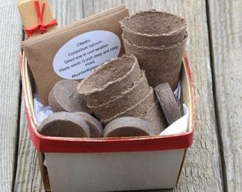 Salsa Garden Seed Kit, Salsa Plant Kit, Heirloom Vegetable Seeds, Great Hostess Gift or Housewarming Gift, Container Gardening
