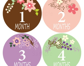 Set of 12 Month 2 Month Baby Valentina Collection Monthly Iron Ons
