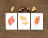 Set of three leaf prints, watercolour prints, leaf print, autumn leaves, watercolor leaf painting, nature study