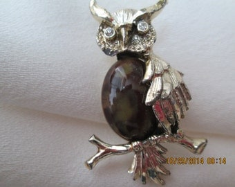Owl pin by Gerry jelly belly