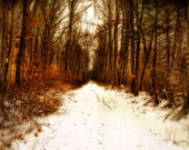 Snow Covered Trail - Landscape Photography - Forest - Surreal Photo - Winter - Pathway - Country Road - Trailway