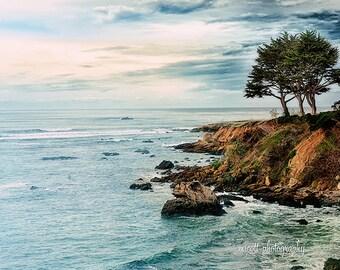 Landscape Photography | Pacific Ocean Art | Monterey Cypress Tree | San Simeon California | Square Wall Art | Blue Home Decor | Fine Art