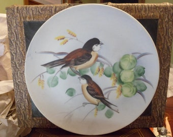 Lefton China chickadee Plate Made in Japan   (T)