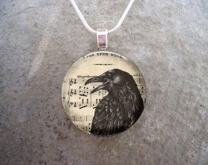 Crow Jewelry - Bird Jewellery - Glass Pendant Necklace - Raven 3