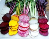 Rainbow Beet Collection, five fancy heirlooms, 300 mixed seeds, saute, salads, juice, fall garden, cool weather crop, easy to grow, non GMO