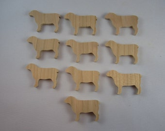 Sheep (10)