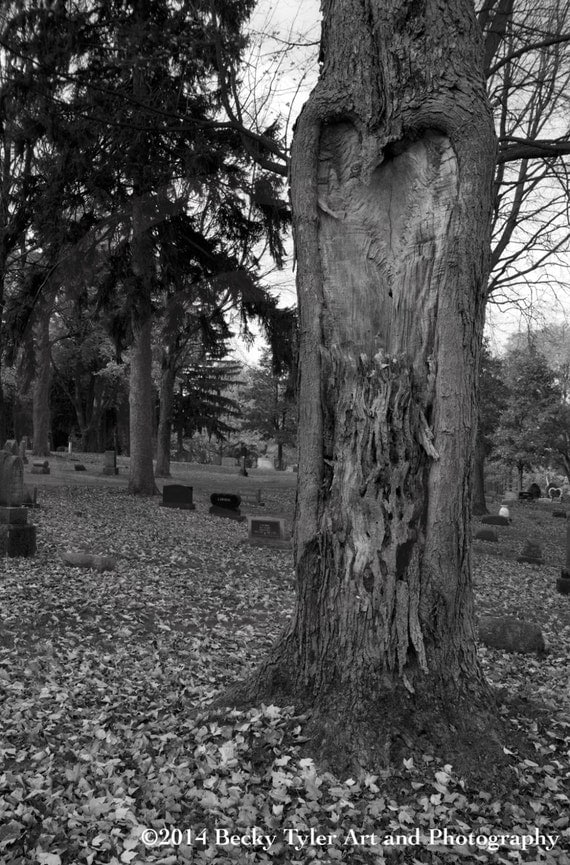 Cemetery Black and White Photography Fine Art by BeckyTylerArt