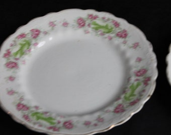 Pair Vintage White Pink Flowers Green Castle Dinner Plates