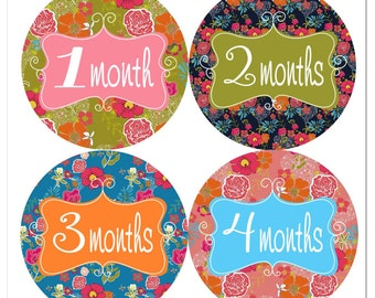 Fancy Florals Baby Monthly Stickers