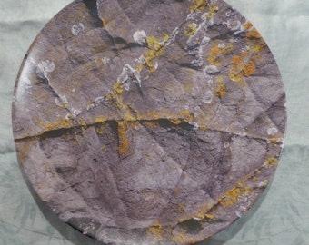 Monhegan Rock and Lichen Plate
