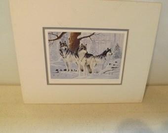 Wolf Wolves Print called Friends By Amneris Fernandez
