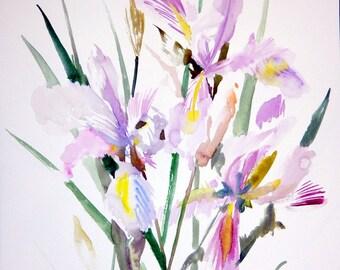 Soft Pink Violet Irises, 20 x 15 in, original watercolor, brush painting, minimalist irises wall art