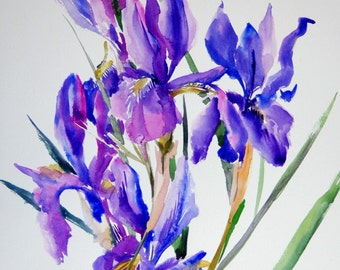 Blue Purple Irises, Original watercolor painting, 20 X 15 in