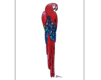 Catchii illustration, with originally hand-painted illustration of parrot red