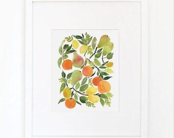 Citrus Composition- Watercolor Art Print