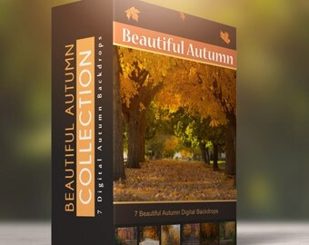 Beautiful Autumn - 7 Digital Backdrops For your Fall Photos + 2 Bonus