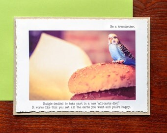 Low Carb Funny Greeting Card: Budgie on a Diet