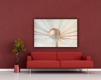 White Pearl Water Drop Macro Photograph, Ethereal Home Decor Wall Art, Dandelion Seed Nature Photography, Fine Art Macro Still Life Photo