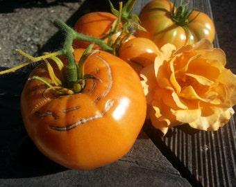 Heirloom Tomato seed, Kelloggs Breakfast, tomatoe seeds, organic garden, tomato plants, vegetable seeds