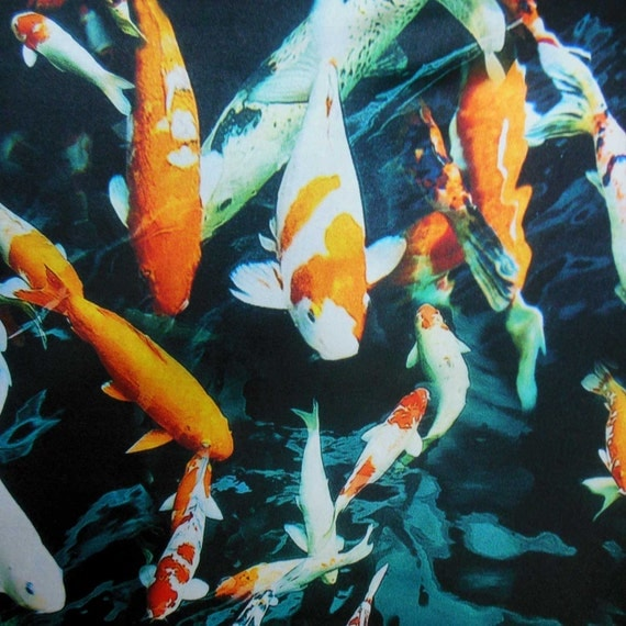 Like real koi golden fish by the half 0 5 yards digital print for Koi fish print fabric