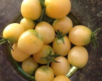 Organically Grown, non-GMO, Heirloom Snow White Tomato Seed