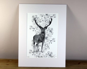 Rose Stag Limited Edition Print