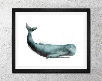 Whale / Original Illustration Art Print - Wall Decor - Poster [24x18 or 14x11]