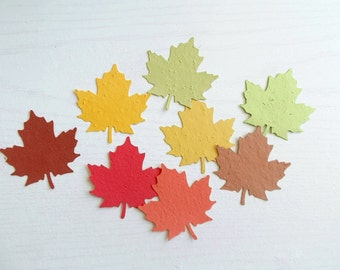 50 Large Maple Leaf Cut Outs - Eco Friendly Leaves Made From Paper Embedded With Flower Seeds - Plant and Grow!
