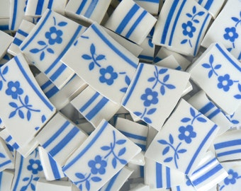 China Mosaic Tiles Blue & White Floral Pattern Plate Pieces Set of 70+