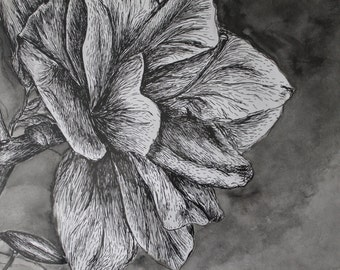 Ink Azalea Art Print, Available in 3 Sizes: 8x12, 10x15, and 15x22 inches