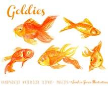 Watercolor Clipart - Watercolor Clip Art - Watercolor Goldfish Clipart Illustration