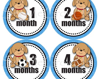Baby Monthly Stickers, Baby Shower Gift, Puppy Baby Sports Stickers, Milestone Stickers Baby Month Stickers, Boy Stickers B122