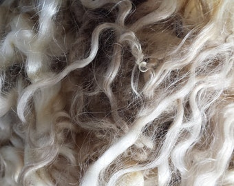 English Leicester LAMB Fleece • Spinning, Felting, Craft | per ounce