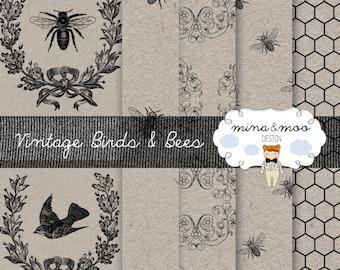 x6 Vintage birds & bees, vintage bee digital papers, honeycomb, bee graphics