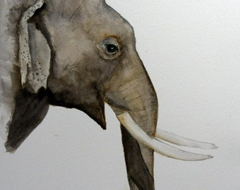 original animal painting Elephant watercolor painting by Betty Moore