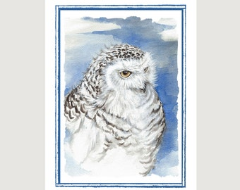 Snowy Owl Note Card Set