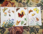 German Butterfly Plates / Book prints- random selection of 3