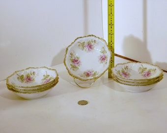 Seven lovely antique porcelain bowls from M.Z. Austria.