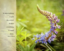 Inspiring Quote, FREE GIFT, Inspirational Art, Photo with Quote, Purple Lupine, Maine Lupine, Summer Image, Rural Decor, New England Scene,